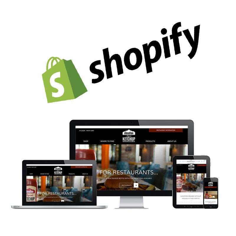 shopify ecommerce consulting